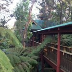 Foto van Guest Cottages at Volcano Tree House