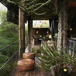 Singita Sweni Lodge Lounge