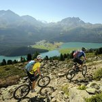 Pure nature - Hiking and Biking above Engadine lakes