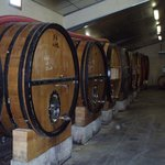 Bandol Wine Tours Private Tours