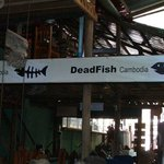 Dead Fish Guesthouse
