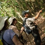 We have the Best Guided Hikes in Corcovado National Park.