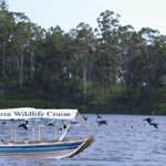 Tinaburra Wildlife Sunset Cruise