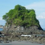 Gray Line One Day Tour: Manuel Antonio National Park