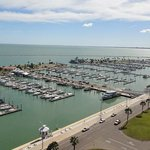 Views of Shoreline Dr and the Corpus Christi Marina