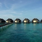  Le ponton d&#39;accs aux water villas