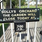 Solly's Orchard