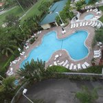  View of Pool from Heron 2