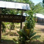 ‪Tangkoko Lodge‬