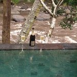  champagne in private pool by river -awesome
