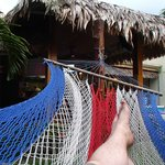  Hammock near pool and Bar