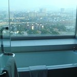  View from the bathroom (15th floor)
