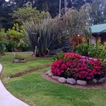  the pathway to the guest rooms, where hummingbirds roam