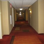 Foto van Courtyard by Marriott Middletown