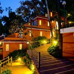  tea valley resort night view