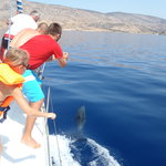 ‪Captain Panos Sailing Day Tours‬