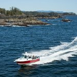 Tofino Fish Guides - Private Charters