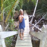 bridge to the surf!