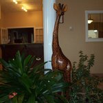 The giraffe who oversees all the check-in & check-out proccesses.
