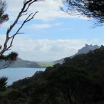  Mt Manaia Taurikura bay
