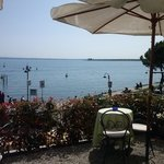  il giardino nel lago
