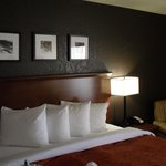Country Inn & Suites By Carlson Corpus Christi의 사진