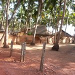  Agonda village