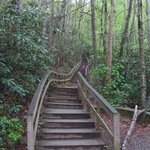  Stairs to Mingo Falls