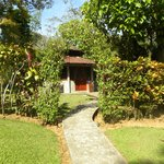  view from outside the private yard of the honeymoon bungalow