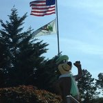 Foto de Yogi Bear Jellystone Park and Resort
