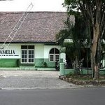 Hotel Camelia
