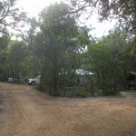  Bushland setting