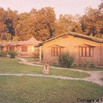 Corbett Nature Camp