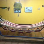 Hammock for our guests