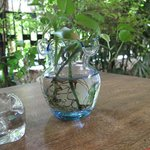  the little vase on our dining table
