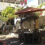 Bilde fra Baja Bed and Breakfast
