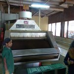 tea drying equipment