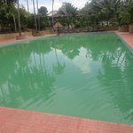  The green and dirty pool