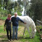  con il cavallo Napoleone