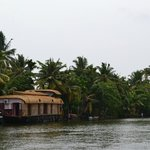  Down the narrow backwaters of Alappuzha