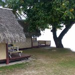 Photo of Moorea Camping