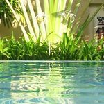 Crystal clear 12 m x 6 m pool