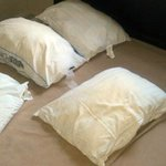 None of the 4 pillows in the bedroom had pillow cases, all smelled badly.