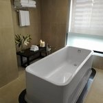  -Greatest Room Bathtub