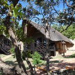  bongani lodge