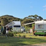Spacious powered camp sites