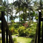 Photo de Coconut Garden Island Resort