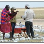 Break fast at Amboseli AP