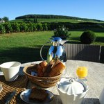  breakfast in the garden overlooking the viniards