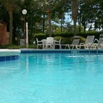 Φωτογραφία: Red Roof Inn Myrtle Beach Hotel - Market Commons